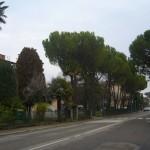 Din nou în Italia…