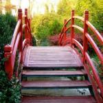 Totul despre Grădina Botanică din Cluj