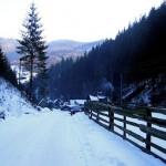 Frig sec și peisaj savuros pe Valea Ierii