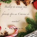 Crăciunul înainte să vină, ca și lacrima înainte să cadă…