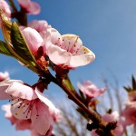 Minivacanța de Paște în 15 imagini și cam tot atâtea fraze