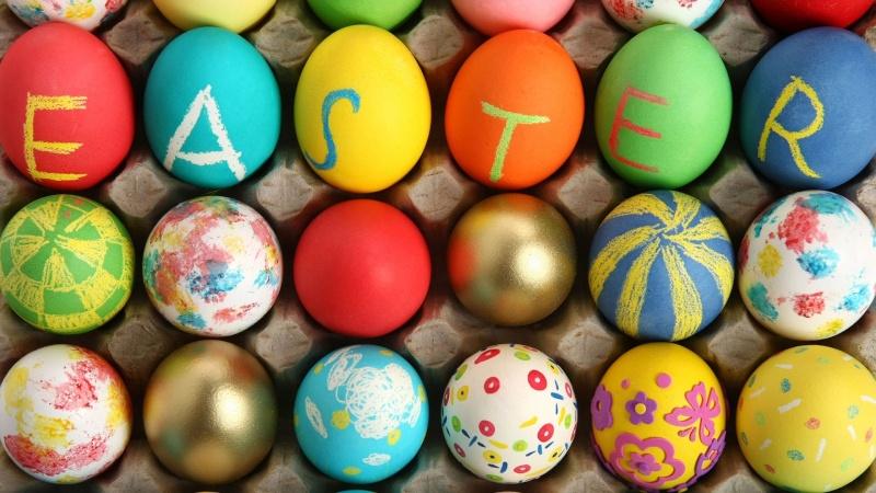 eggs-h10
